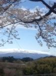 山くっきり_2464.JPG