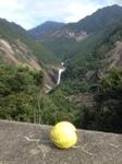 IMG_3175t滝とグアバ.JPG